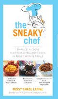 sneaky chef recipes kids